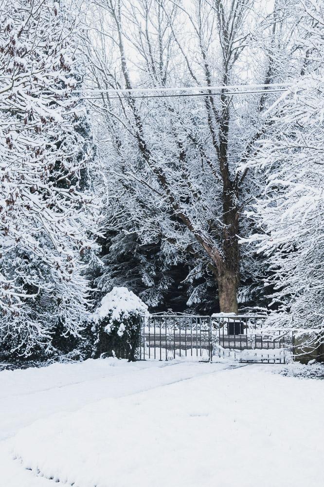 february 2019 longford ireland  snow