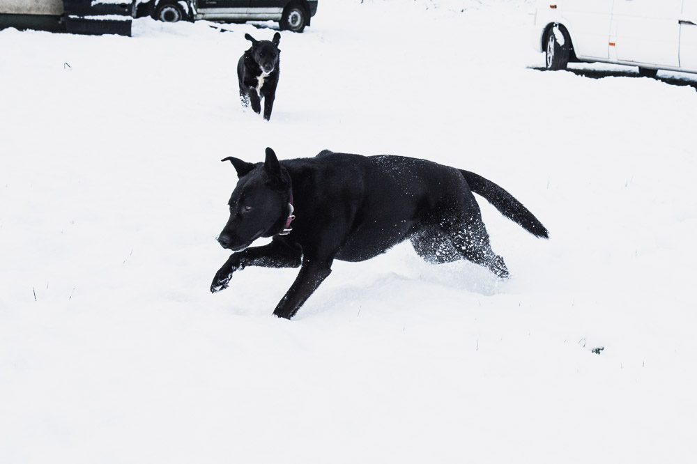 the tales of tinyboots winter fun snow