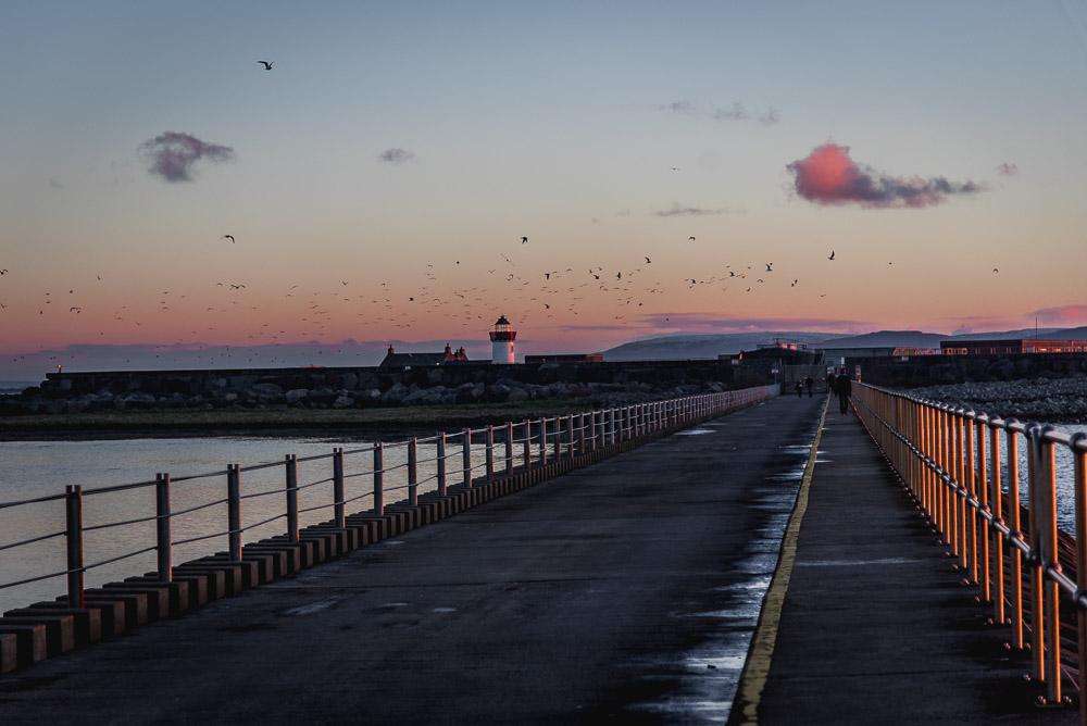 blue hour, galway, salt hill, ireland, beach, light house, birds