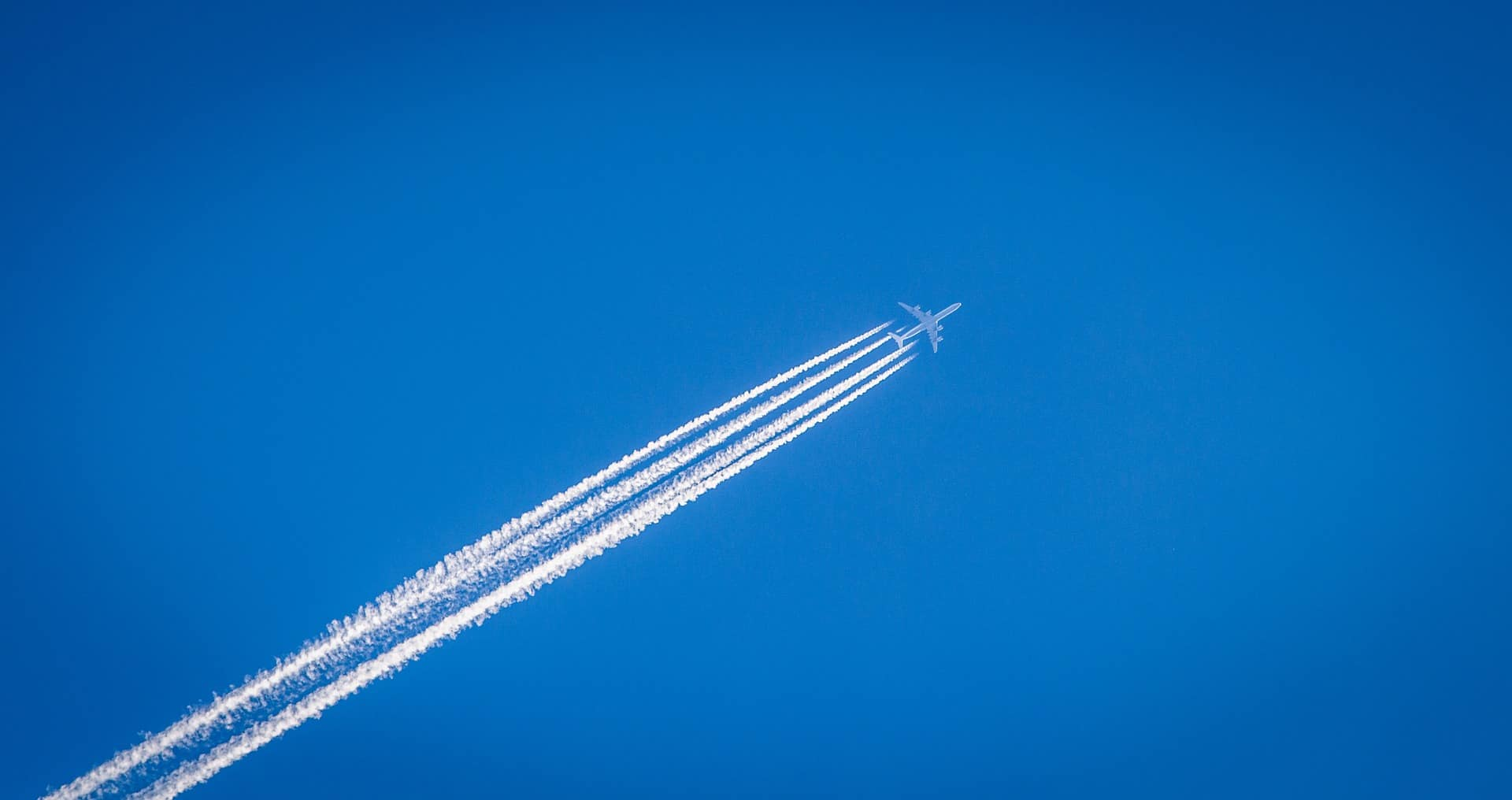 Petrified of flying? These tips really help – coming from a gold medal flight evader