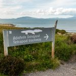 tetrapod trackway, valentia island , kerry, ireland