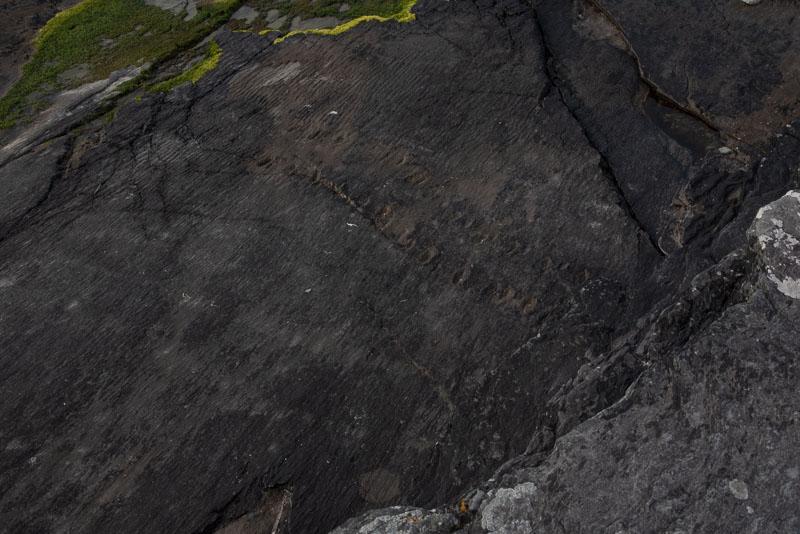 Killarney glamping, killarney, Kerry, ireland, travel, tetrapod trackway, valentia island