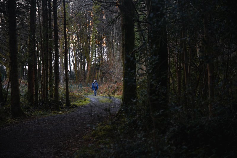 roscahill woods, galway