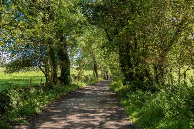 Knockma hill galway, tuam, hiking trails in Galway, things to do, outdoors, adventure